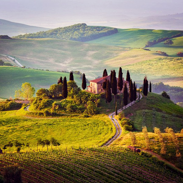 Vacation Packages Tuscany: The Discovery Of Italian Wines: Toscana