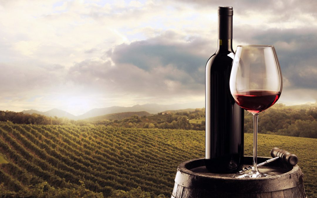 The discovery of Italian wines: Toscana